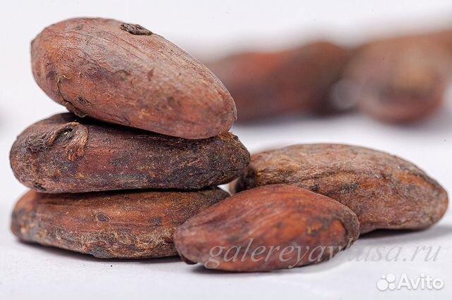 Дерево из какао бобов