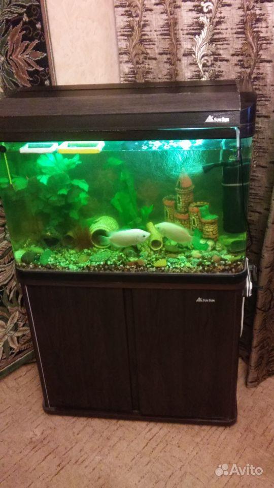 Аквариум SunSun 110 литров с тумбой и рыбами