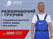 работа с ежедневными выплатами для девушек в москве
