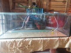 Продам аквариум с оборудованием