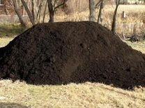 Чернозем — Растения в Саратове